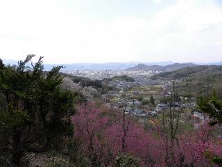 花見山 006.JPG